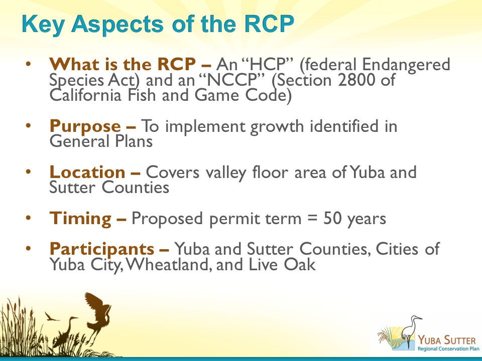 What is the RCP – An HCP (federal Endangered Species Act) and an NCCP (Section 2800 of California Fish and Game Code) Purpose – To implement growth identified in General Plans Location – Covers valley floor area of Yuba and Sutter Counties Timing – Proposed permit term = 50 years Participants – Yuba and Sutter Counties, Cities of Yuba City, Wheatland, and Live Oak