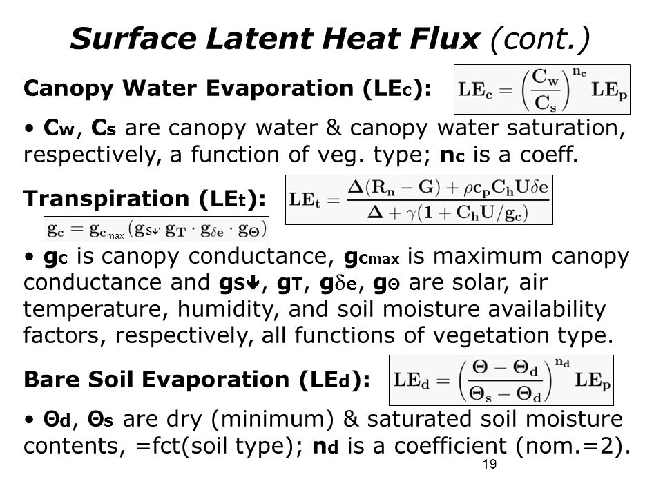 19 Surface Latent Heat Flux (cont.) Canopy Water Evaporation (LE c ): C w, C s are canopy water & canopy water saturation, respectively, a function of
