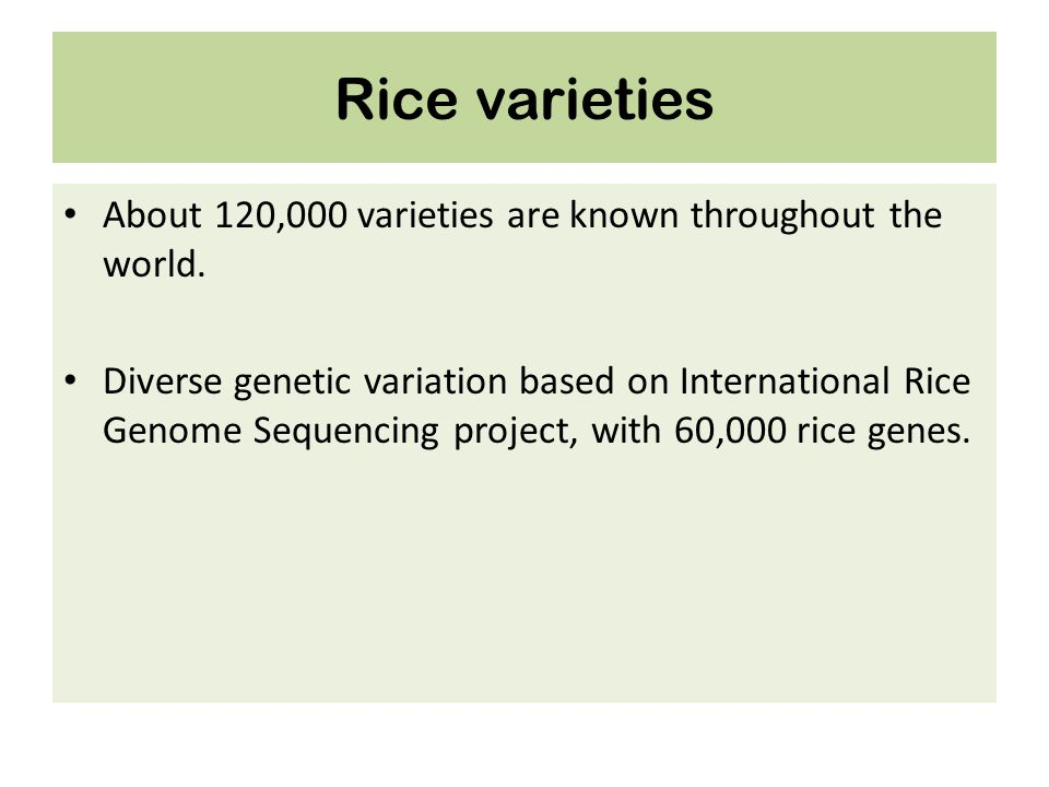 Rice varieties About 120,000 varieties are known throughout the world. Diverse genetic variation based on International Rice Genome Sequencing project