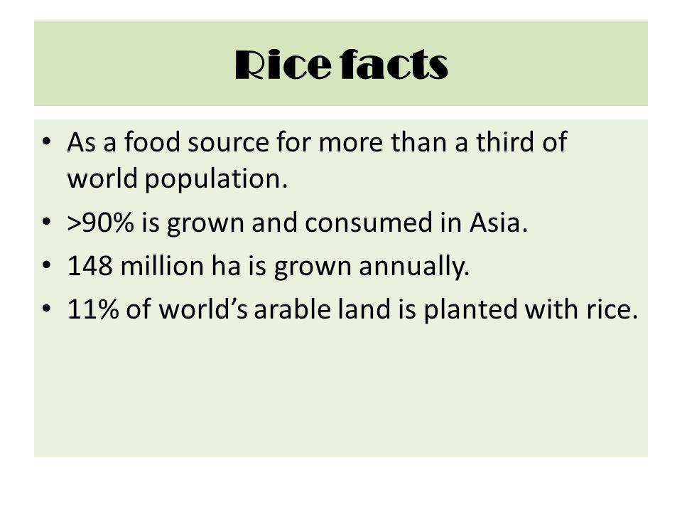 Schematic representation of rice plant Itoh J et al.