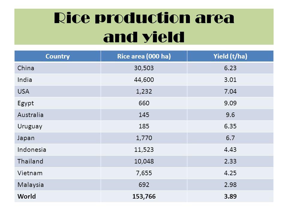 Rice production area and yield CountryRice area (000 ha)Yield (t/ha) China30,5036.23 India44,6003.01 USA1,2327.04 Egypt6609.09 Australia1459.6 Uruguay