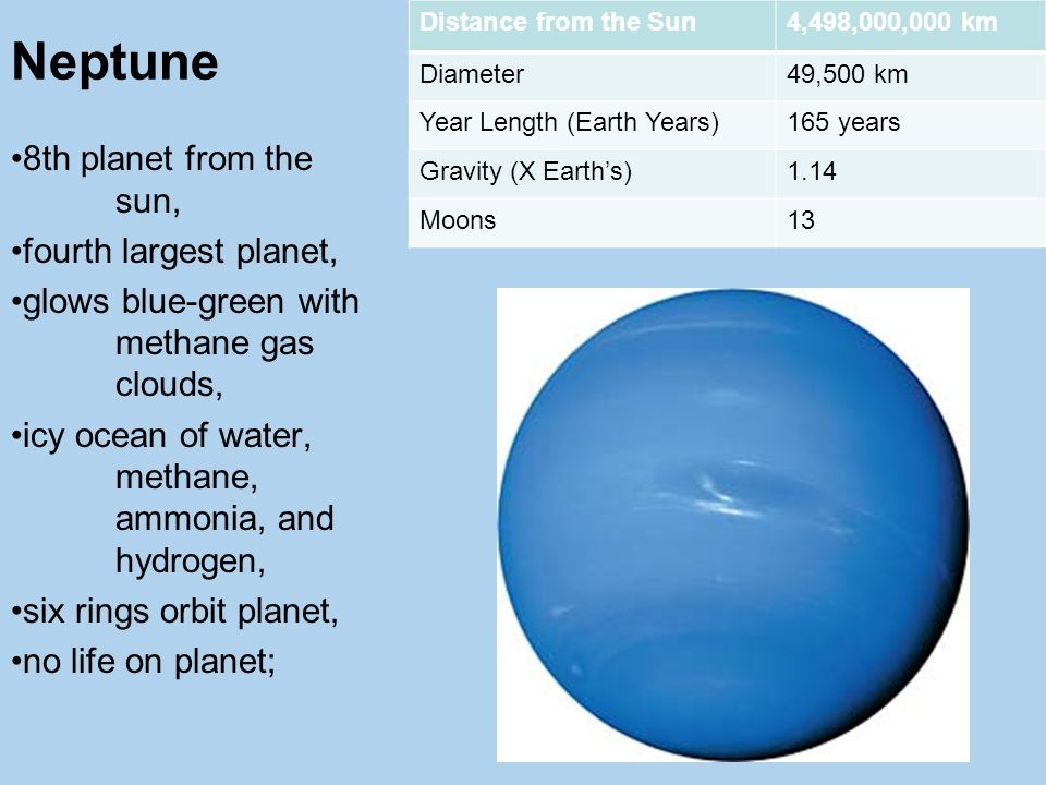 Neptune Distance from the Sun4,498,000,000 km Diameter49,500 km Year Length (Earth Years)165 years Gravity (X Earth's)1.14 Moons13 8th planet from the sun, fourth largest planet, glows blue-green with methane gas clouds, icy ocean of water, methane, ammonia, and hydrogen, six rings orbit planet, no life on planet;