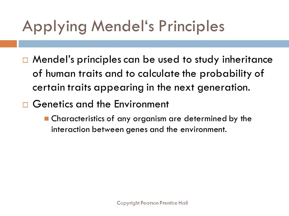 Applying Mendel's Principles Copyright Pearson Prentice Hall  Mendel's principles can be used to study inheritance of human traits and to calculate t
