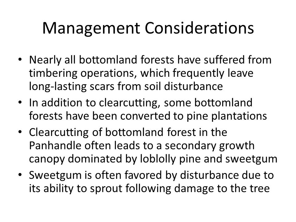 Management Considerations Nearly all bottomland forests have suffered from timbering operations, which frequently leave long-lasting scars from soil d