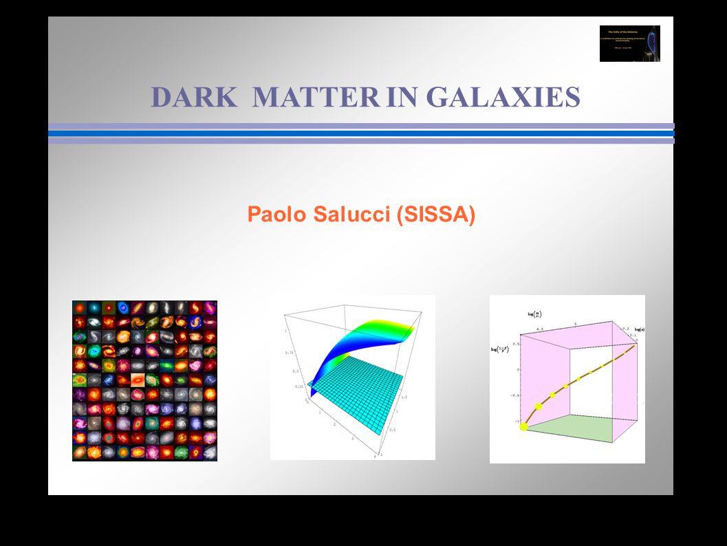 DARK MATTER IN GALAXIES Paolo Salucci (SISSA)