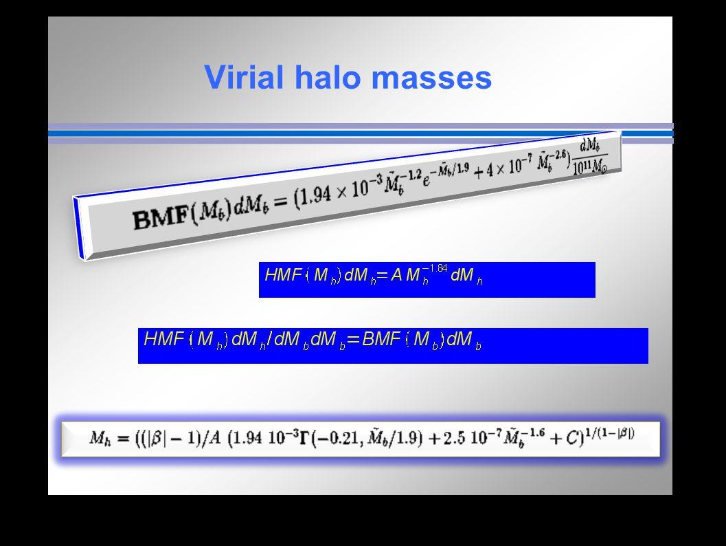 Virial halo masses and