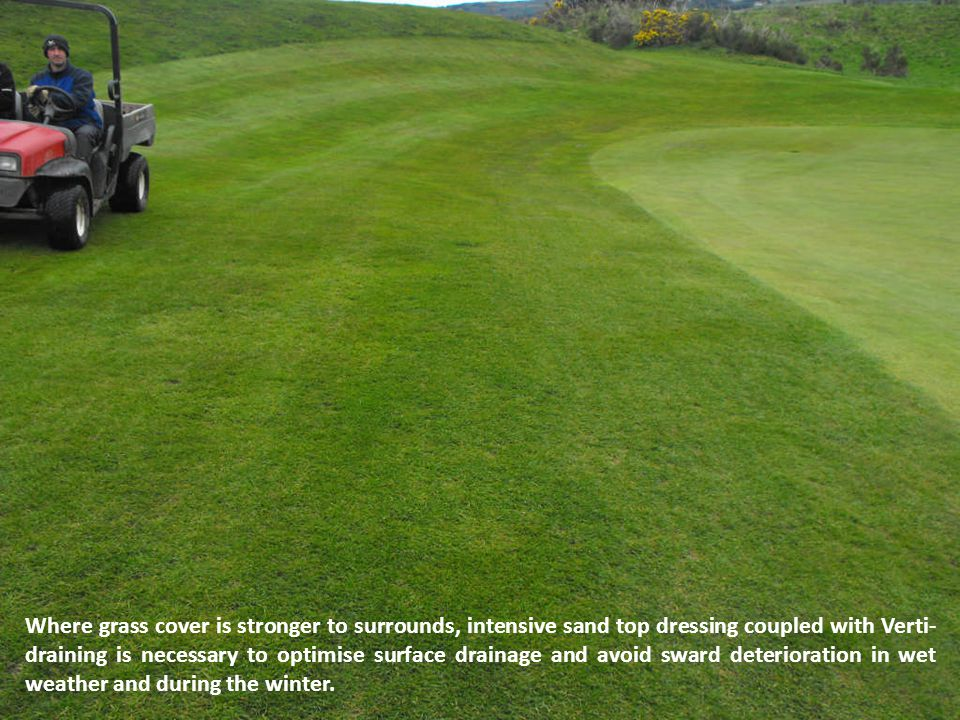 Where grass cover is stronger to surrounds, intensive sand top dressing coupled with Verti- draining is necessary to optimise surface drainage and avoid sward deterioration in wet weather and during the winter.
