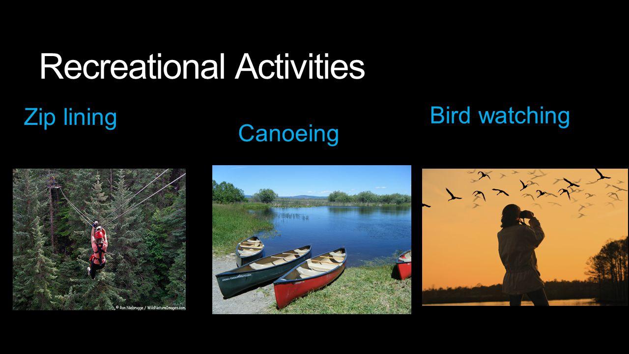 Recreational Activities Zip lining Canoeing Bird watching