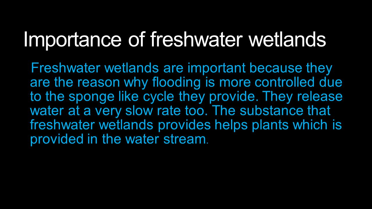 Importance of freshwater wetlands Freshwater wetlands are important because they are the reason why flooding is more controlled due to the sponge like