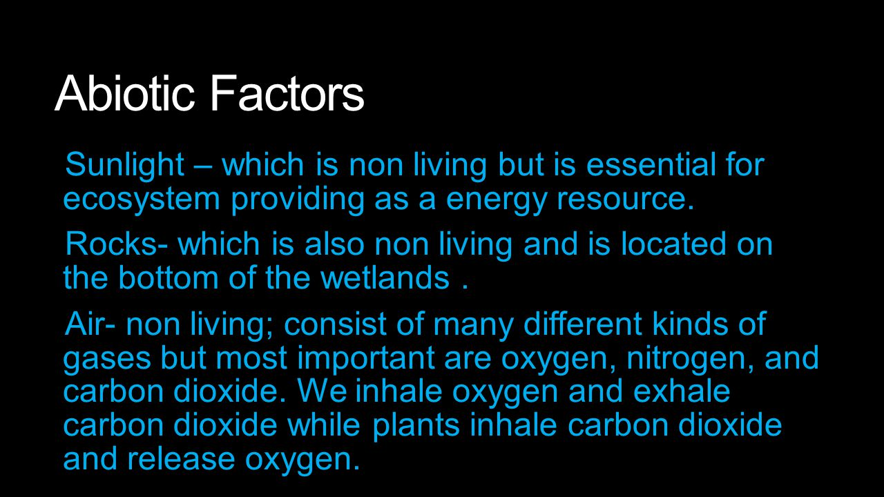 Abiotic Factors Sunlight – which is non living but is essential for ecosystem providing as a energy resource. Rocks- which is also non living and is l