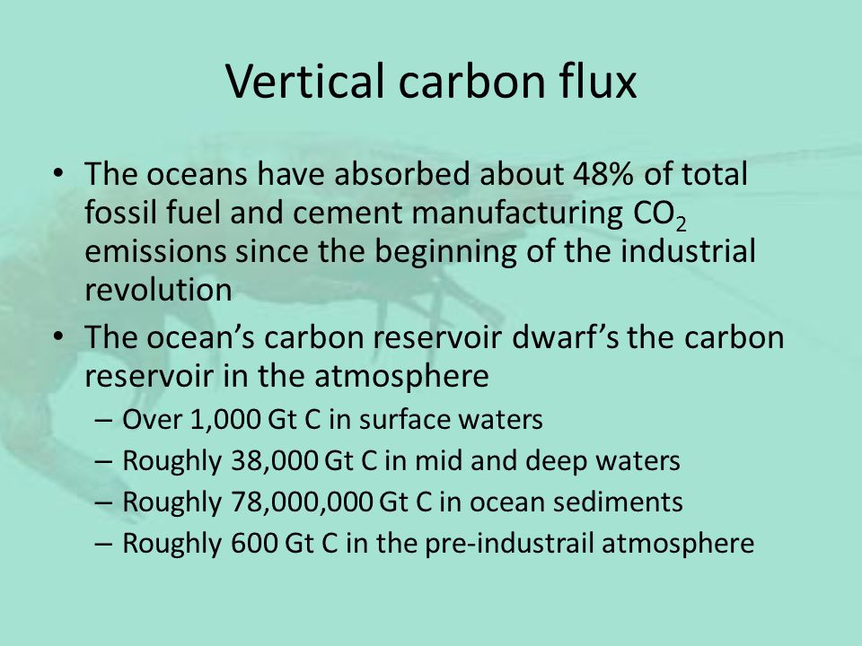 Vertical carbon flux The oceans have absorbed about 48% of total fossil fuel and cement manufacturing CO 2 emissions since the beginning of the indust