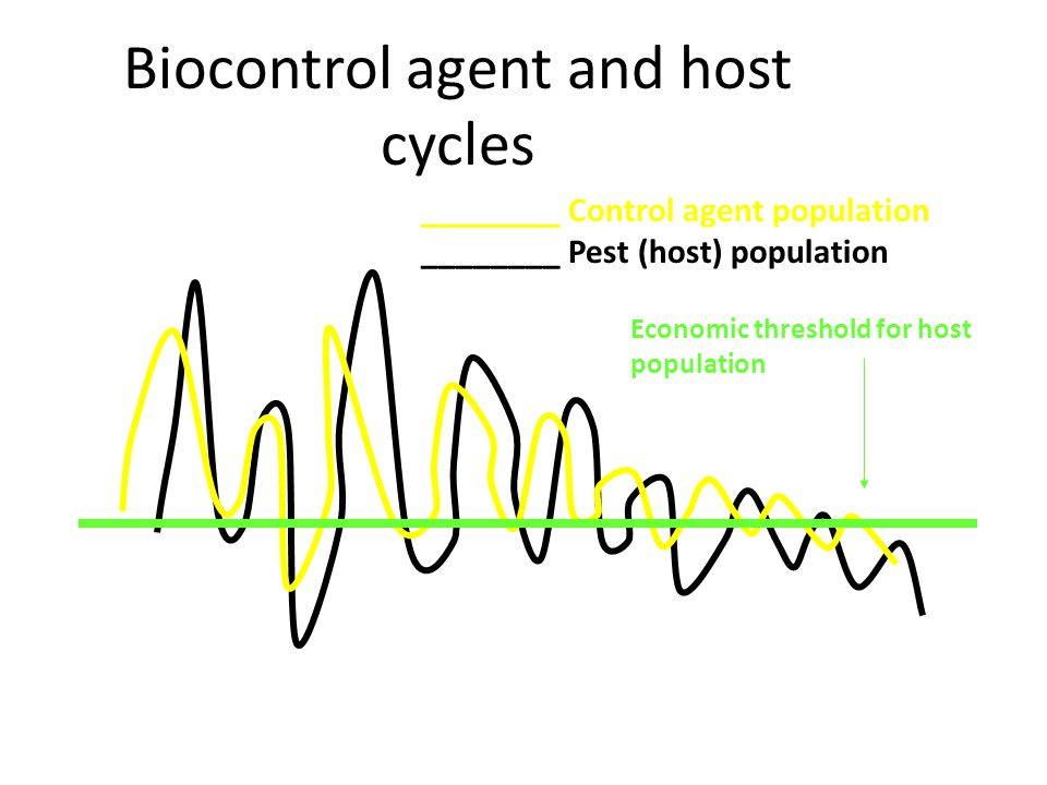 Biocontrol agent and host cycles ________ Control agent population ________ Pest (host) population Economic threshold for host population