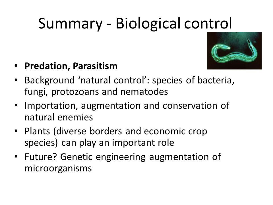 Summary - Biological control Predation, Parasitism Background 'natural control': species of bacteria, fungi, protozoans and nematodes Importation, augmentation and conservation of natural enemies Plants (diverse borders and economic crop species) can play an important role Future.