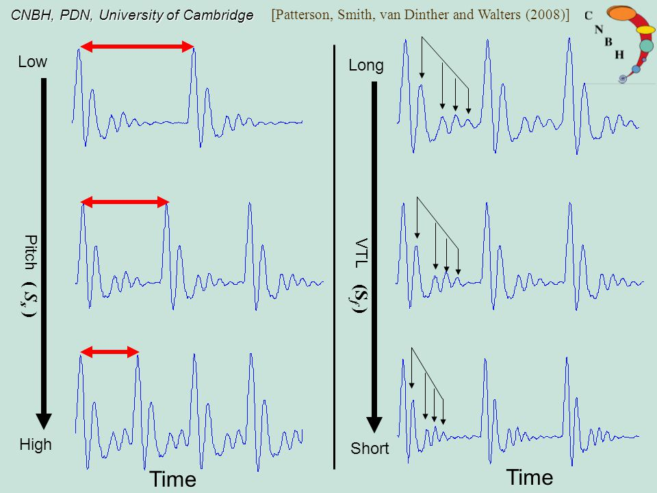 CNBH, PDN, University of Cambridge Experiment: S f discrimination thresholds for five different people Glottal pulse rate / Hz 80 160 320 SER 0.92 1.22 1.65 small male large male small childdwarf counter tenor Ives, Smith and Patterson, JASA (2005) ( S s ) VTL/cm 14 10 19 SfSf