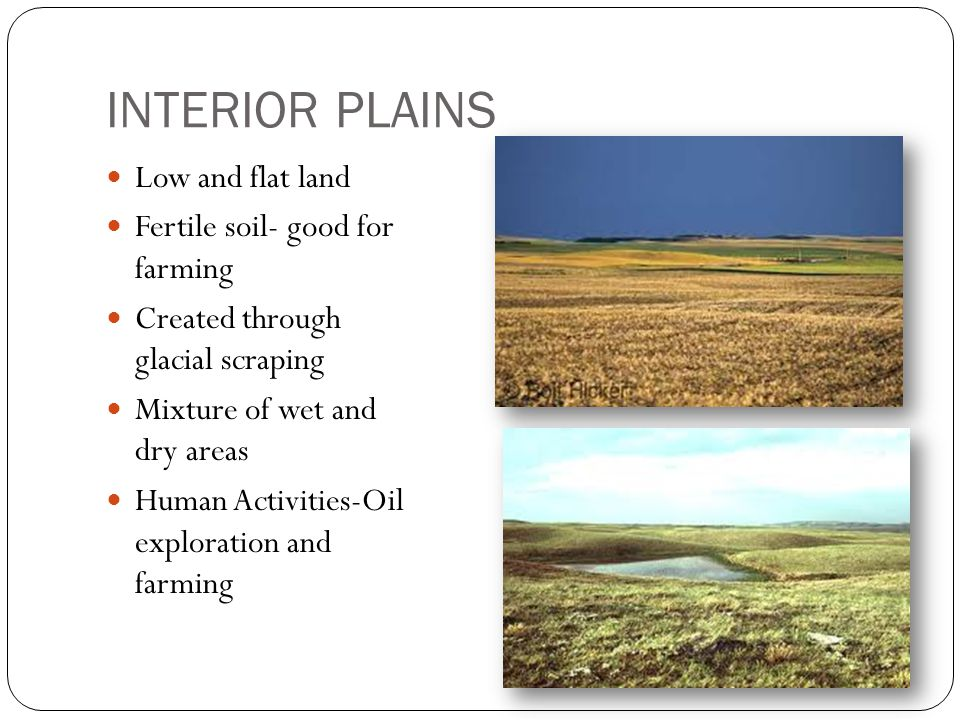 INTERIOR PLAINS Low and flat land Fertile soil- good for farming Created through glacial scraping Mixture of wet and dry areas Human Activities-Oil exploration and farming