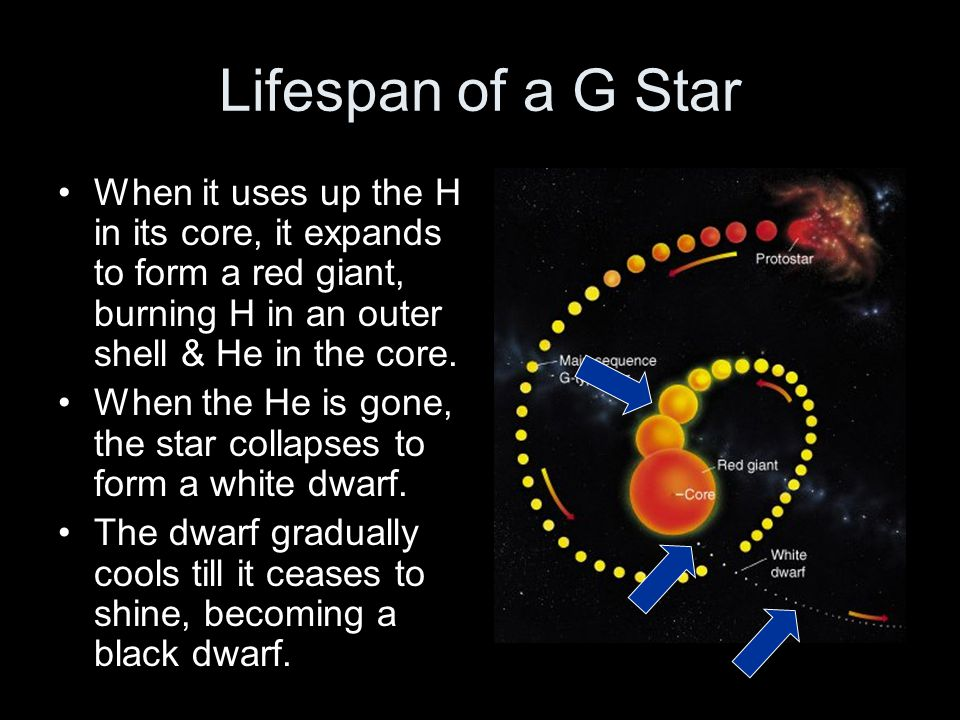 How Larger Stars End Stars that are large enough explode rather than becoming white dwarfs.