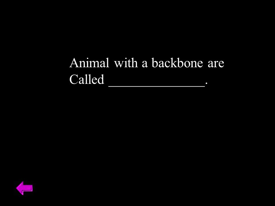 Animal with a backbone are Called ______________. Vertebrates