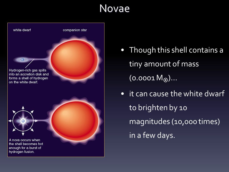 Novae Though this shell contains a tiny amount of mass (0.0001 M  )… it can cause the white dwarf to brighten by 10 magnitudes (10,000 times) in a fe