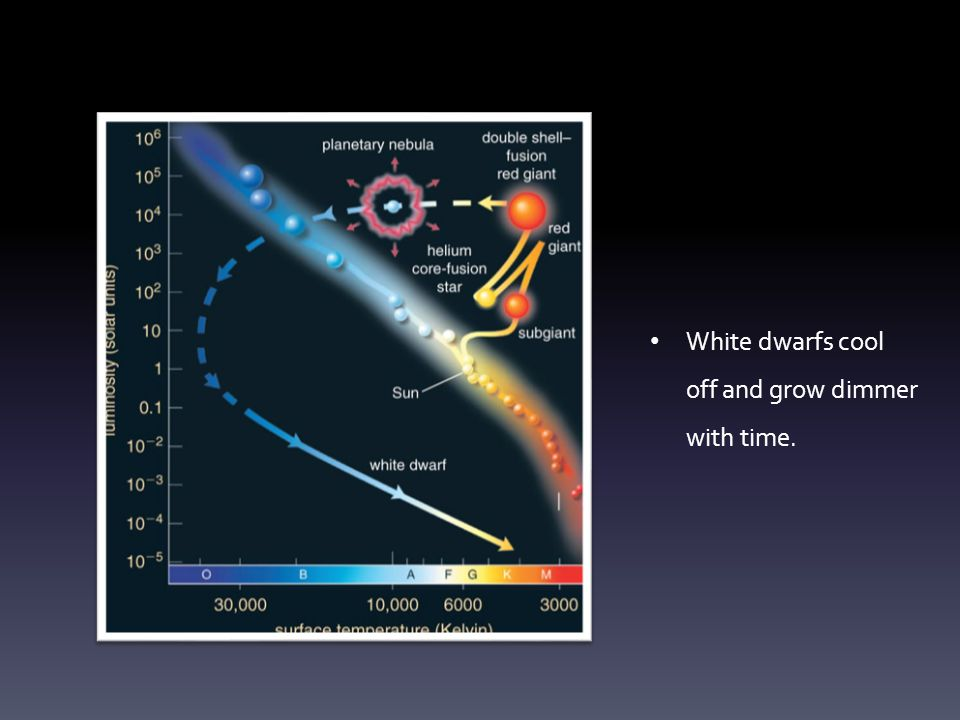 White dwarfs cool off and grow dimmer with time.