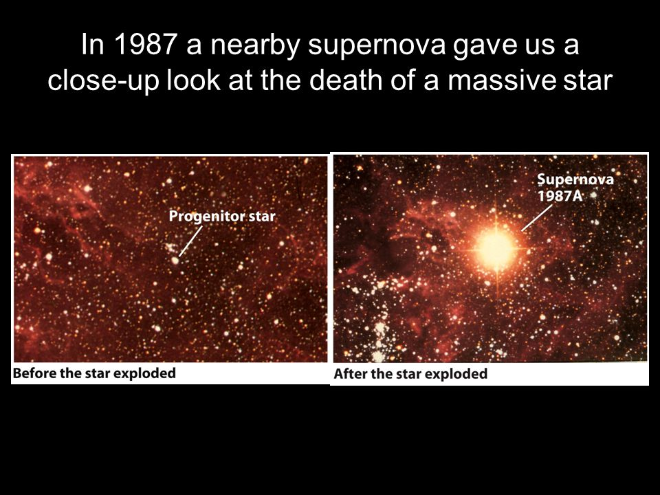 In 1987 a nearby supernova gave us a close-up look at the death of a massive star