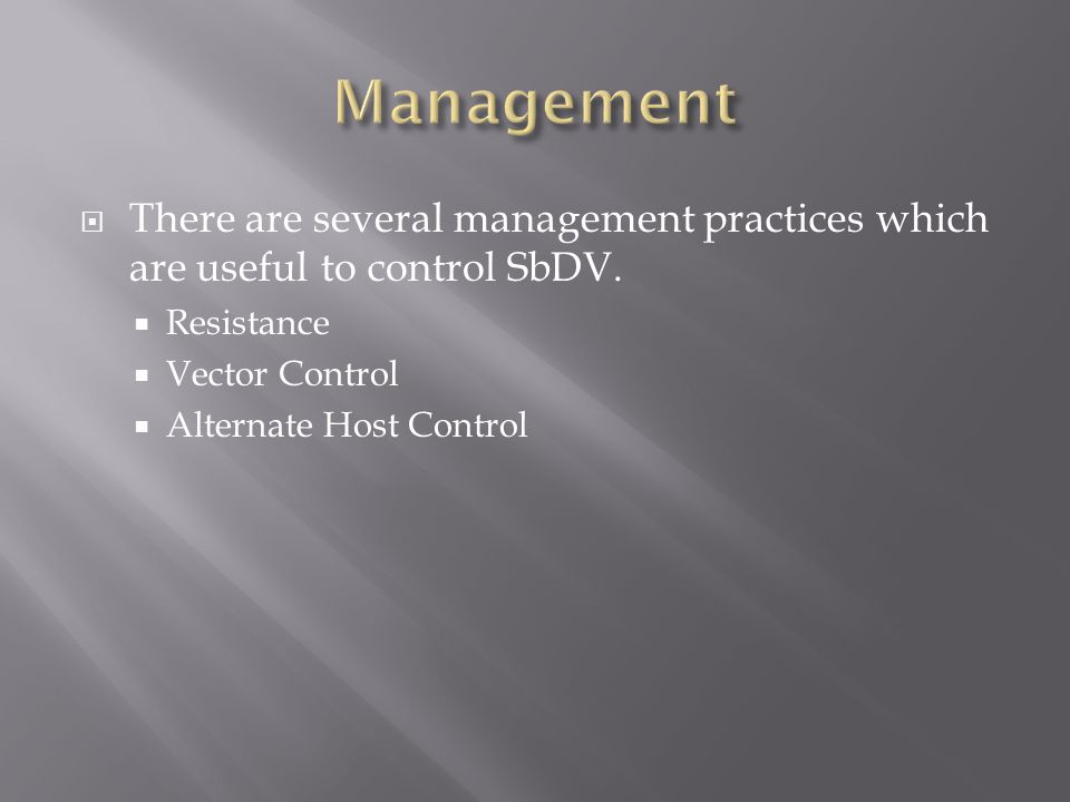  There are several management practices which are useful to control SbDV.