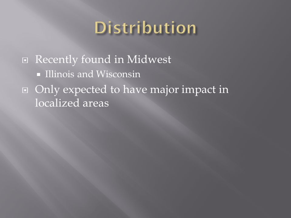  Recently found in Midwest  Illinois and Wisconsin  Only expected to have major impact in localized areas