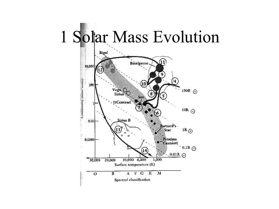 1 Solar Mass Evolution
