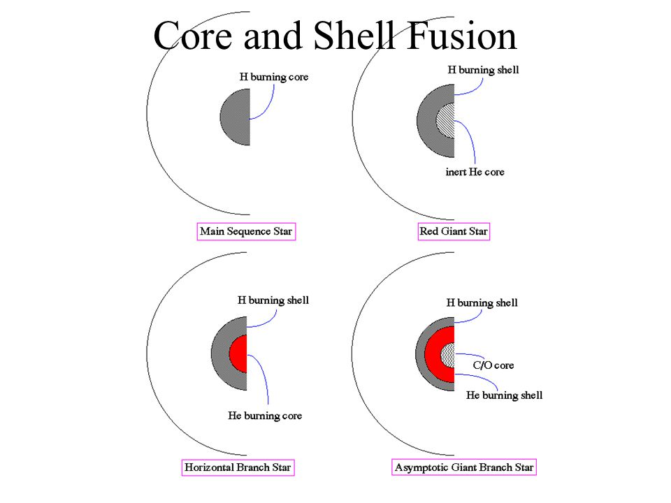 Core and Shell Fusion