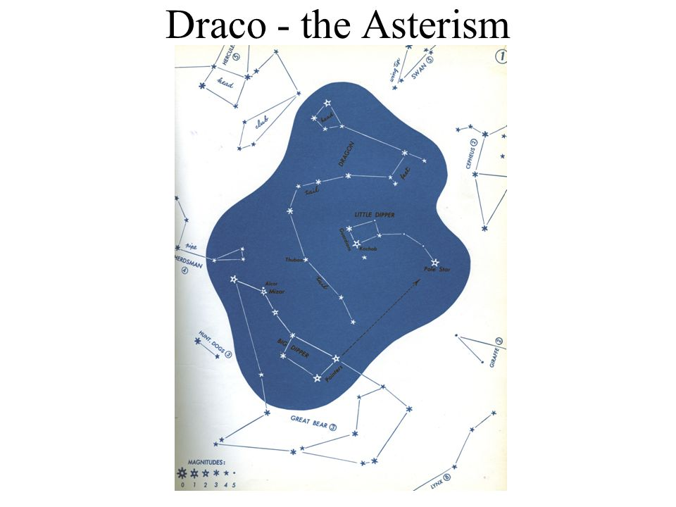 Draco - the Asterism
