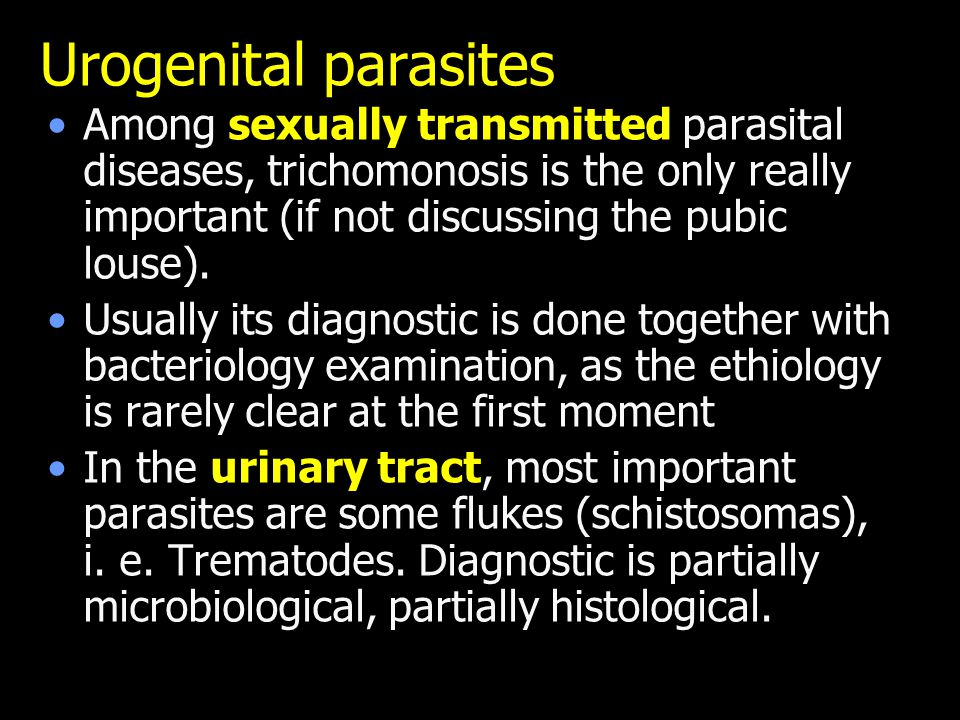 Urogenital parasites Among sexually transmitted parasital diseases, trichomonosis is the only really important (if not discussing the pubic louse).