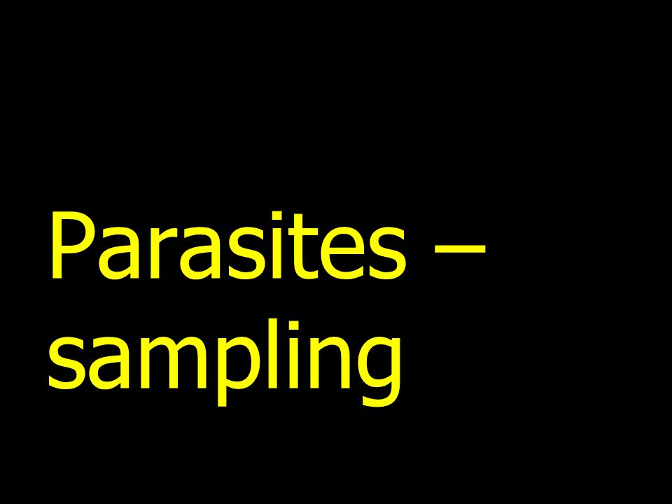 Parasites – sampling