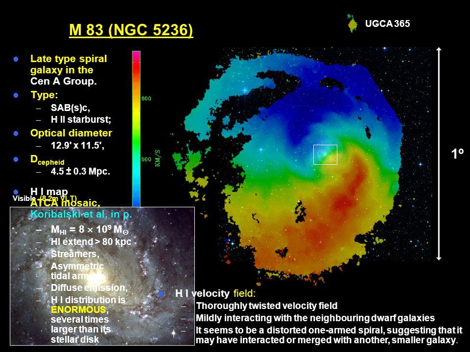 ESO Workshop – Jun 10, 2008 Ángel R. López-Sánchez M 83 (NGC 5236)