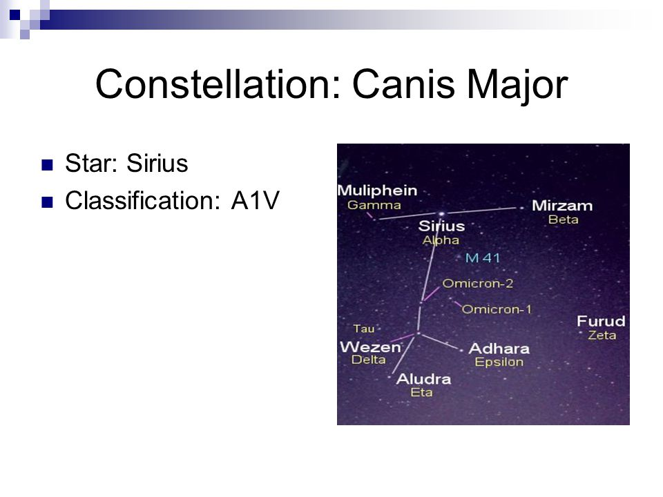 Constellation: Canis Major Star: Sirius Classification: A1V