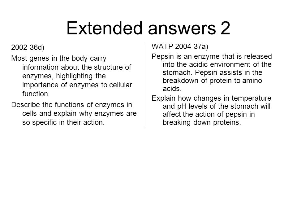 Extended answers 2 2002 36d) Most genes in the body carry information about the structure of enzymes, highlighting the importance of enzymes to cellular function.