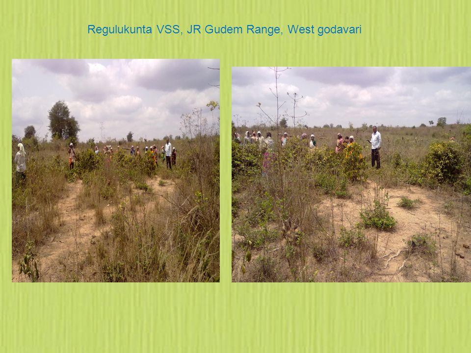 Regulukunta VSS, JR Gudem Range, West godavari