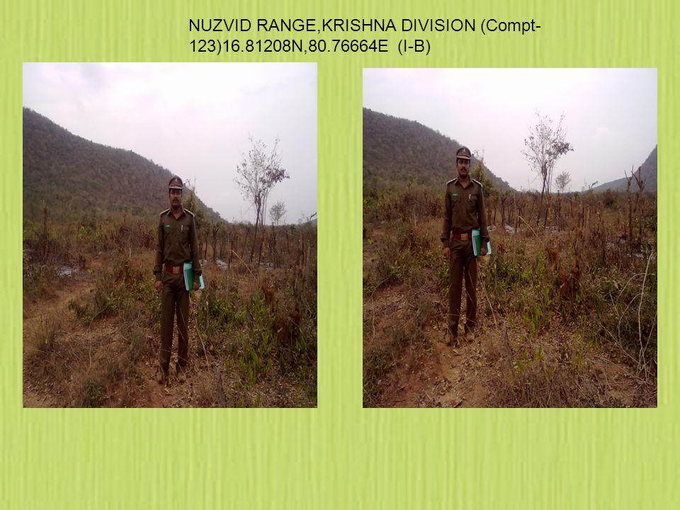 NUZVID RANGE,KRISHNA DIVISION (Compt- 123)16.81208N,80.76664E (I-B)