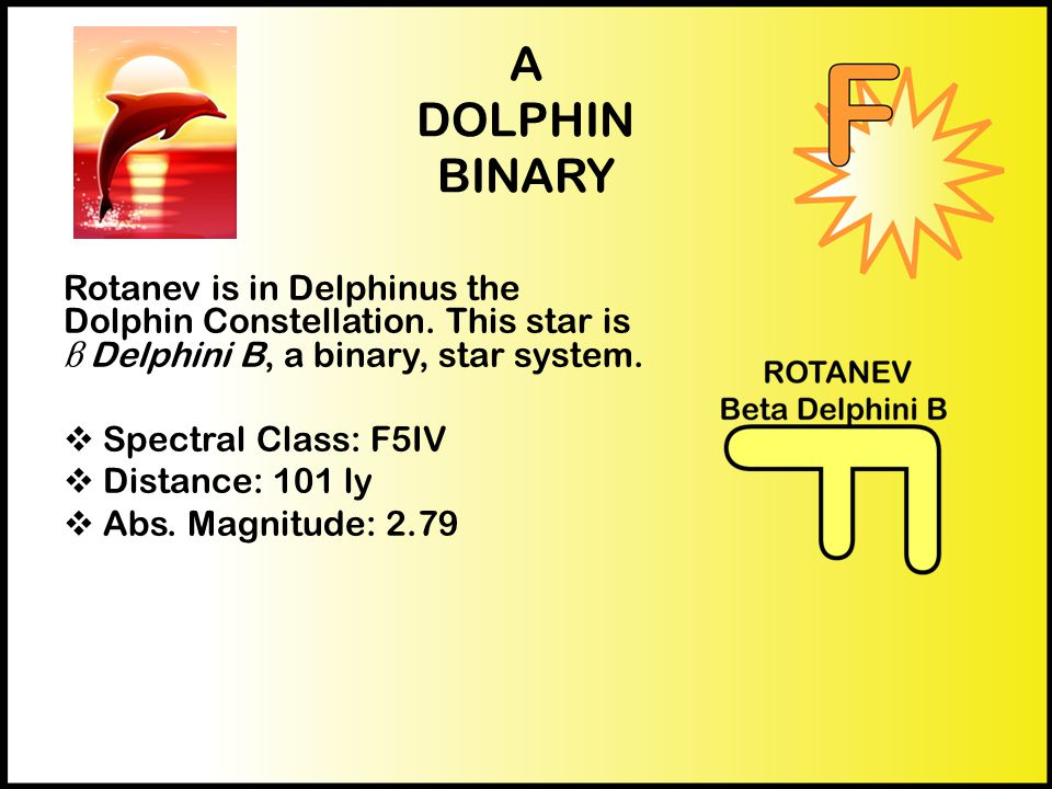 A DOLPHIN BINARY Rotanev is in Delphinus the Dolphin Constellation.