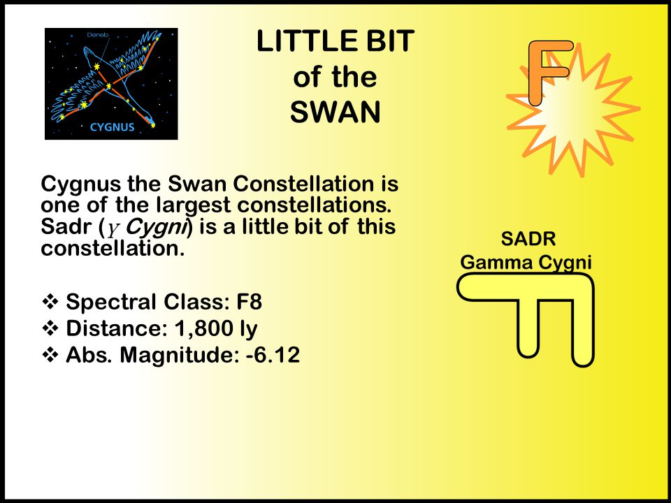 LITTLE BIT of the SWAN Cygnus the Swan Constellation is one of the largest constellations.