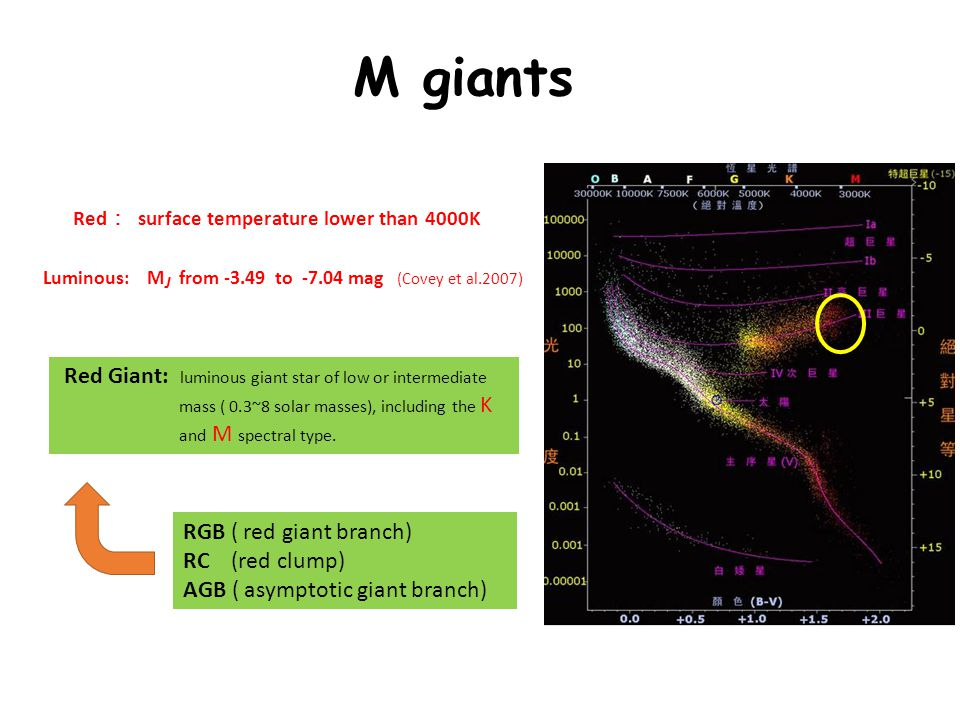 M giants Red : surface temperature lower than 4000K Luminous: M J from -3.49 to -7.04 mag (Covey et al.2007) Red Giant: luminous giant star of low or intermediate mass ( 0.3~8 solar masses), including the K and M spectral type.