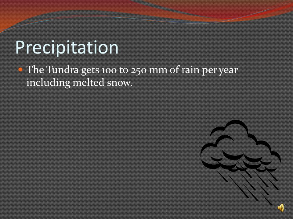 Precipitation The Tundra gets 100 to 250 mm of rain per year including melted snow.