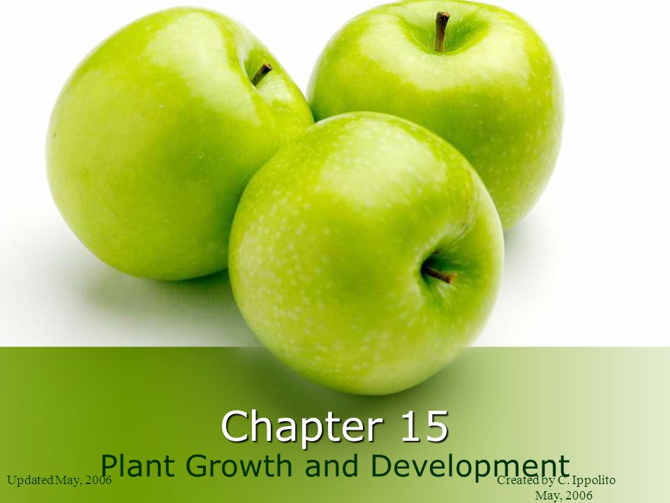 Updated May, 2006Created by C. Ippolito May, 2006 Chapter 15 Plant Growth and Development