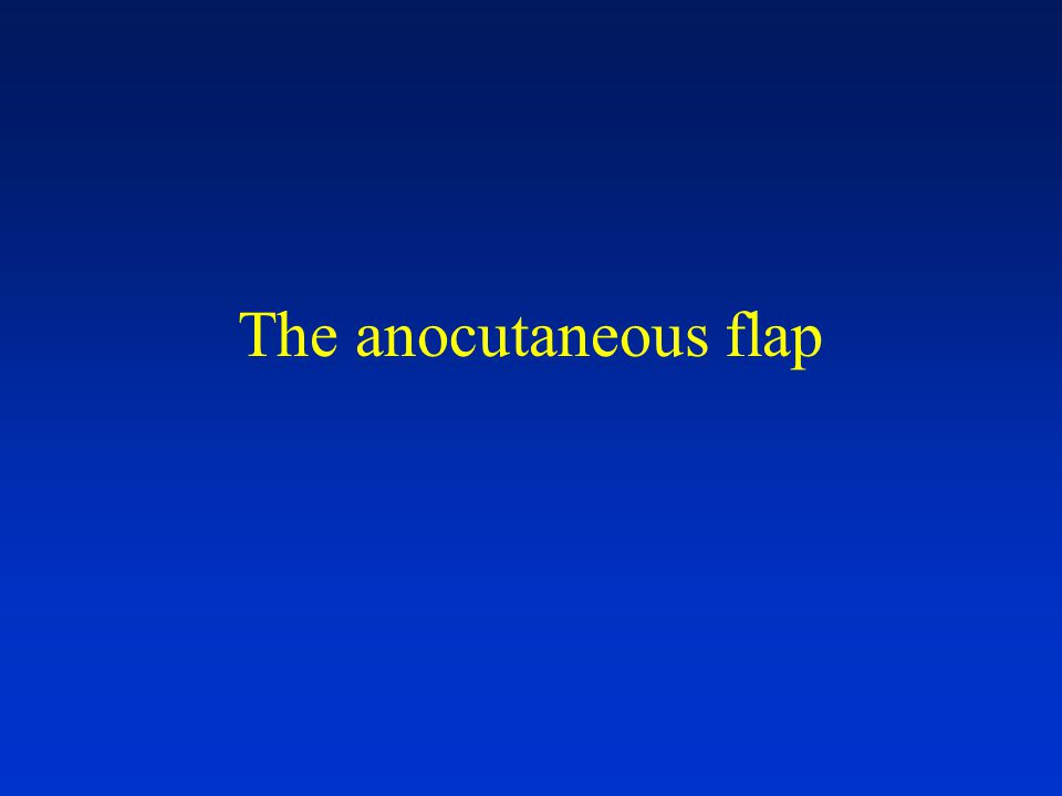 The anocutaneous flap