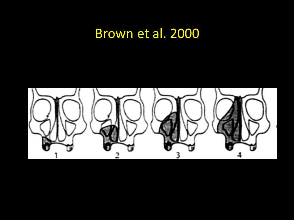 Brown et al. 2000