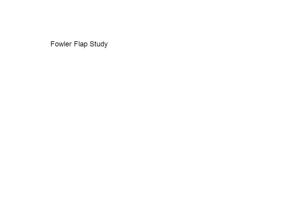 Fowler Flap Study