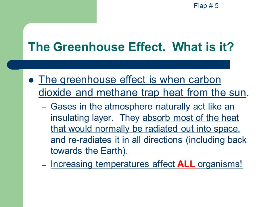 The Greenhouse Effect.What is it.