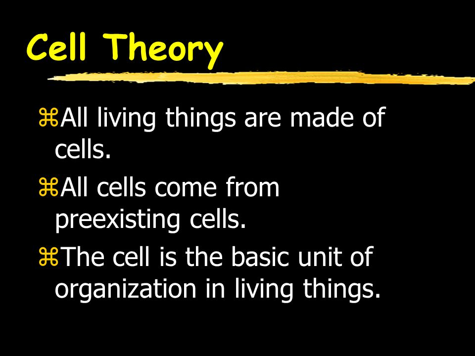 Cell Theory zAll living things are made of cells. zAll cells come from preexisting cells. zThe cell is the basic unit of organization in living things