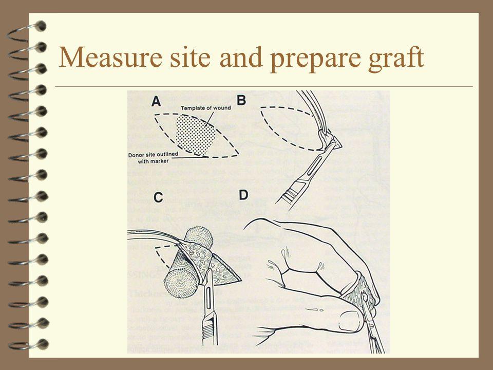 Measure site and prepare graft