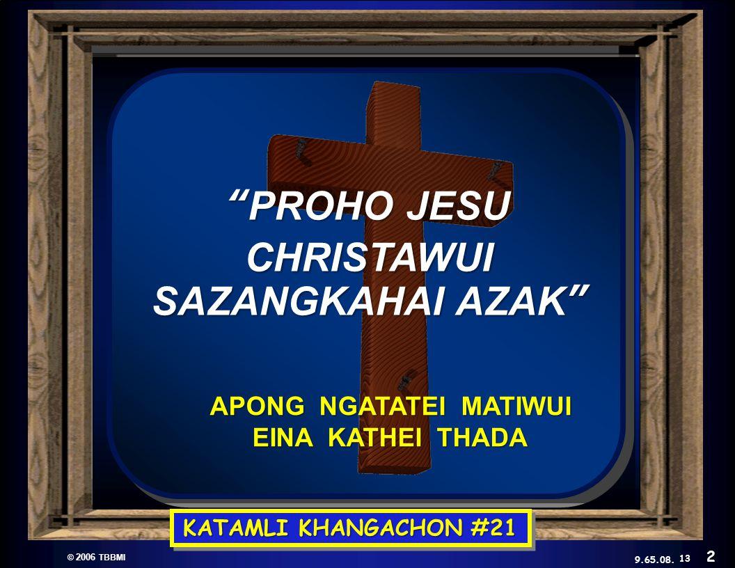 © 2006 TBBMI 9.65.08.