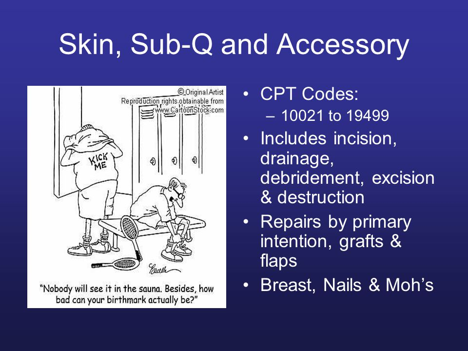 Skin, Sub-Q and Accessory CPT Codes: –10021 to 19499 Includes incision, drainage, debridement, excision & destruction Repairs by primary intention, gr