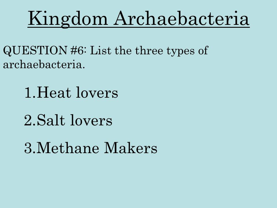 Kingdom Archaebacteria 1.Heat lovers 2.Salt lovers 3.Methane Makers QUESTION #6: List the three types of archaebacteria.
